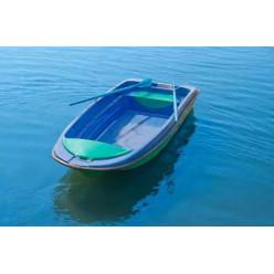 Лодка стеклопластиковая Пингвин (тримаран)