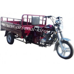 Трицикл RACER RC200ZH MURAVEI